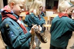 Besøg af slanger