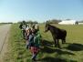 Ulvenes 20 km tur 2014